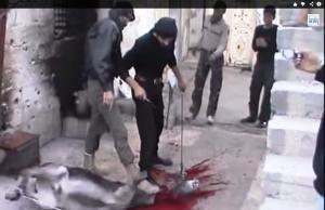 Jihadis Display 'Power of Islam' on Donkey Victims